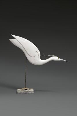 Stephen Henderson , Freak little Egret