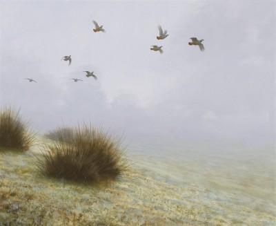 Rodger McPhail , Redlegs in the mist
