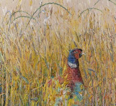 Amanda Page , Fields of gold (Pheasant)