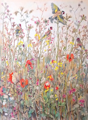 Emma Faull , Goldfinches in meadow
