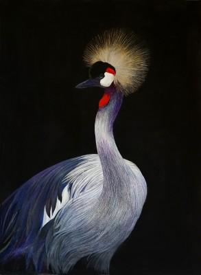 Emma Faull , Crowned Crane