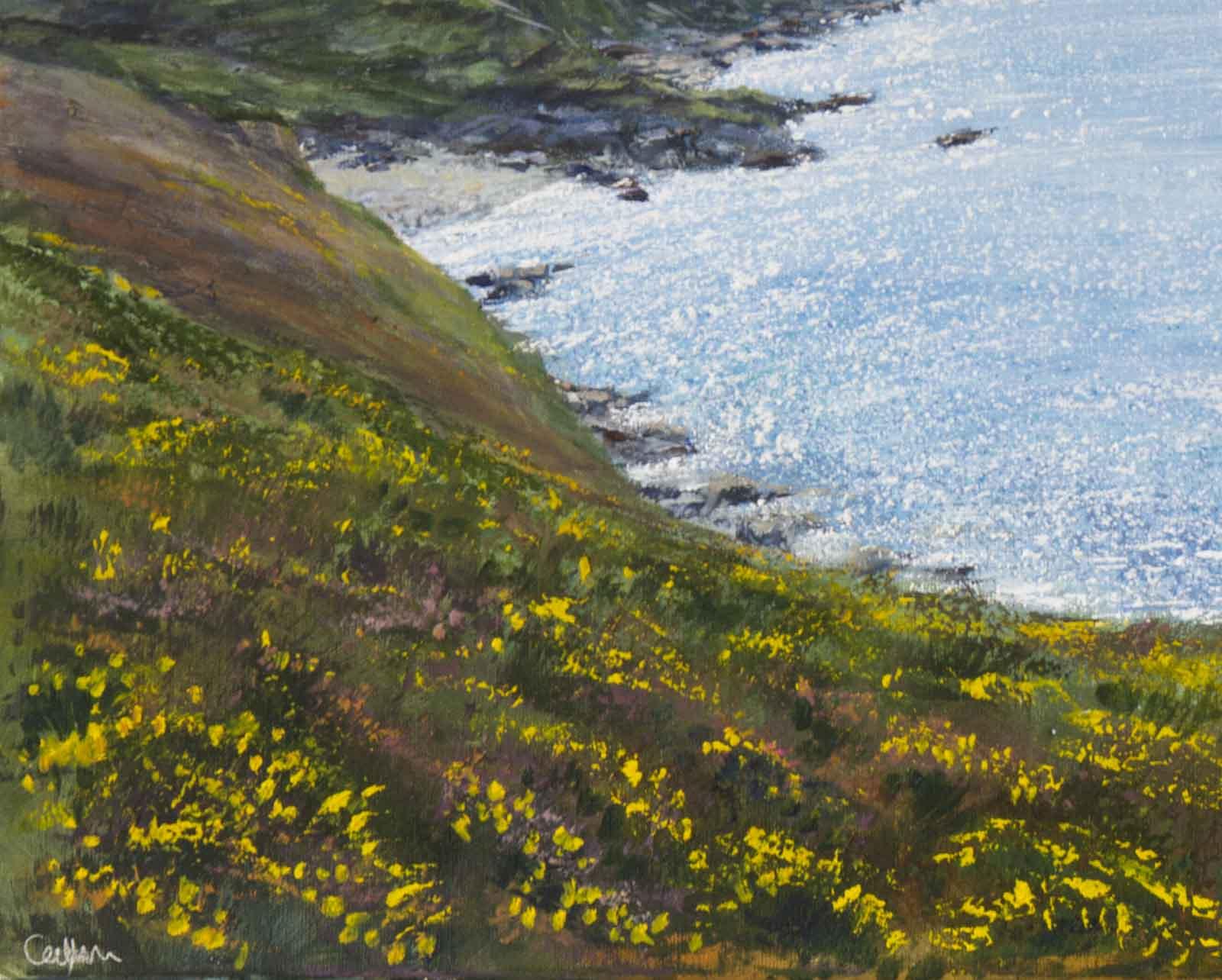 Cornish Vista