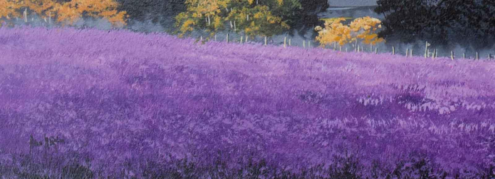 Purple Fields