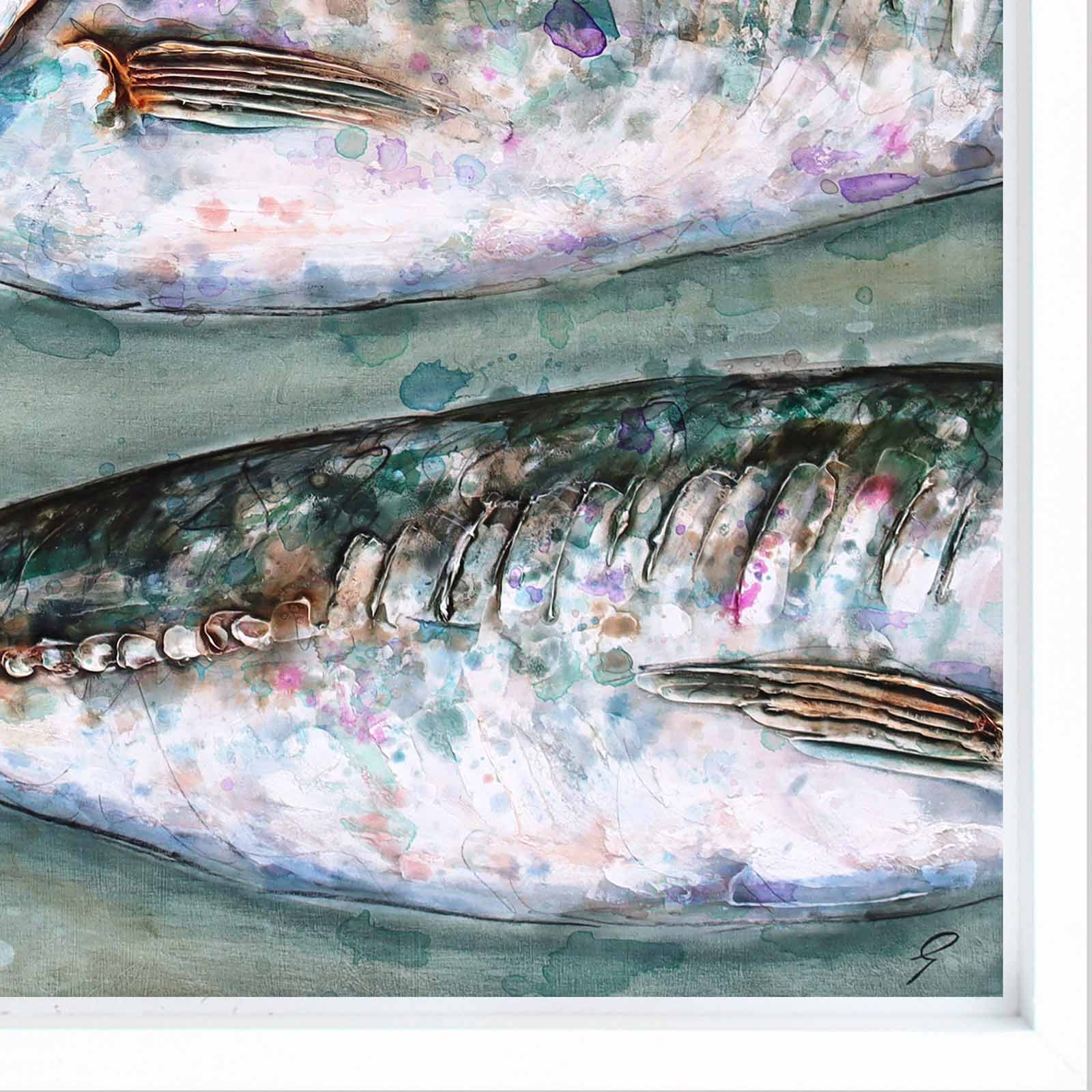 Three Large Mackerel Scad