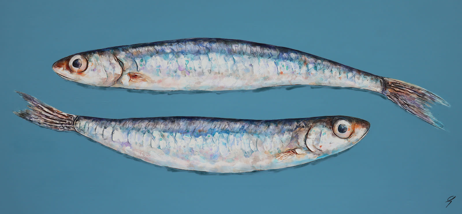 Two Anchovies