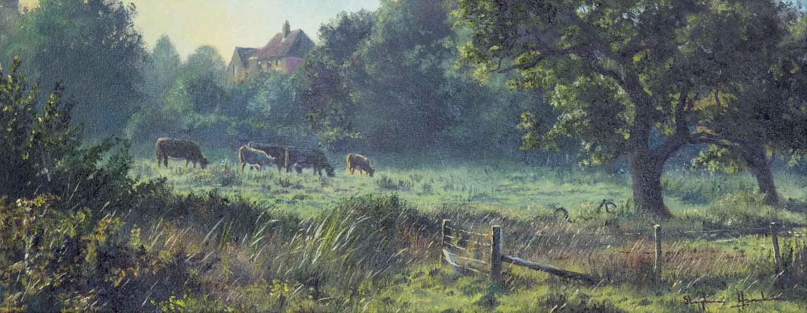 Countryside Life