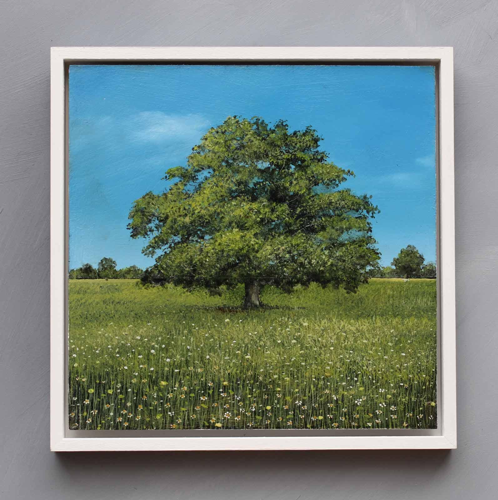 Ancient Oak Summer Study