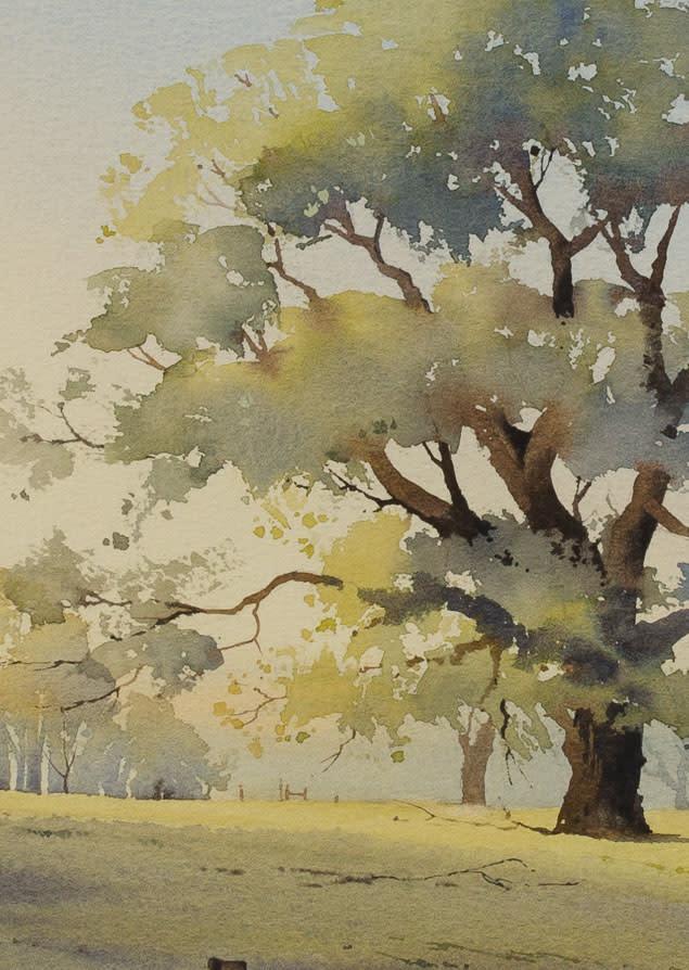 Sussex Oak