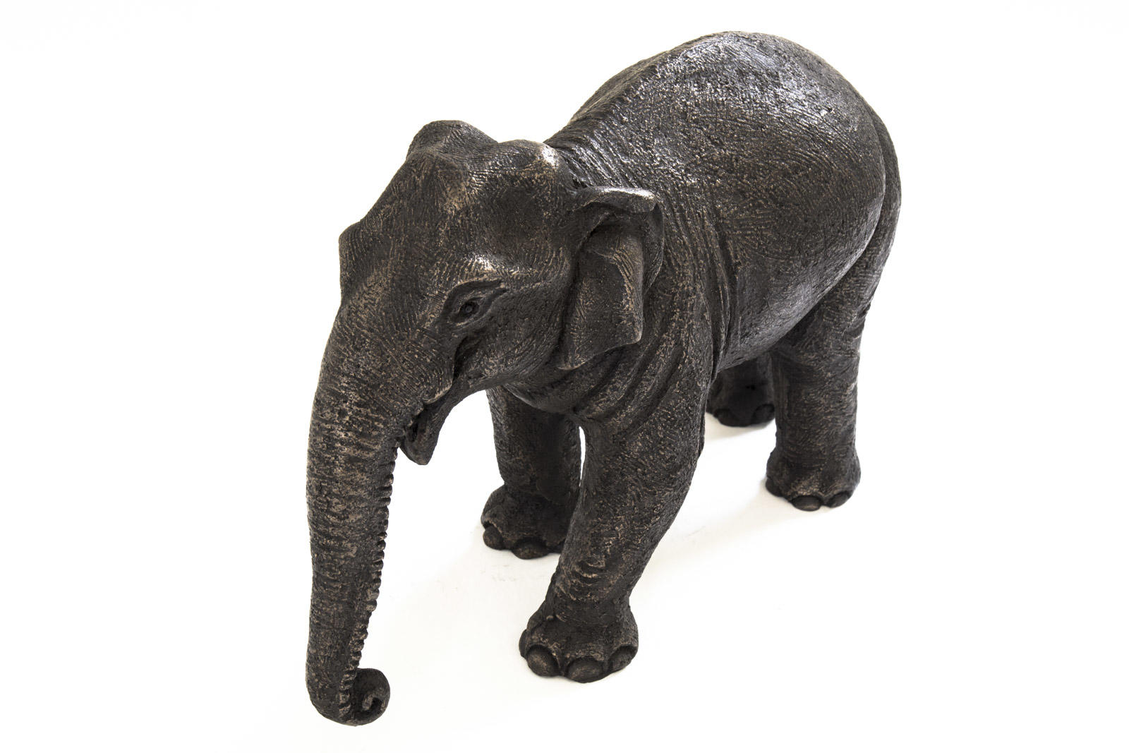 Asian Elephant Mother