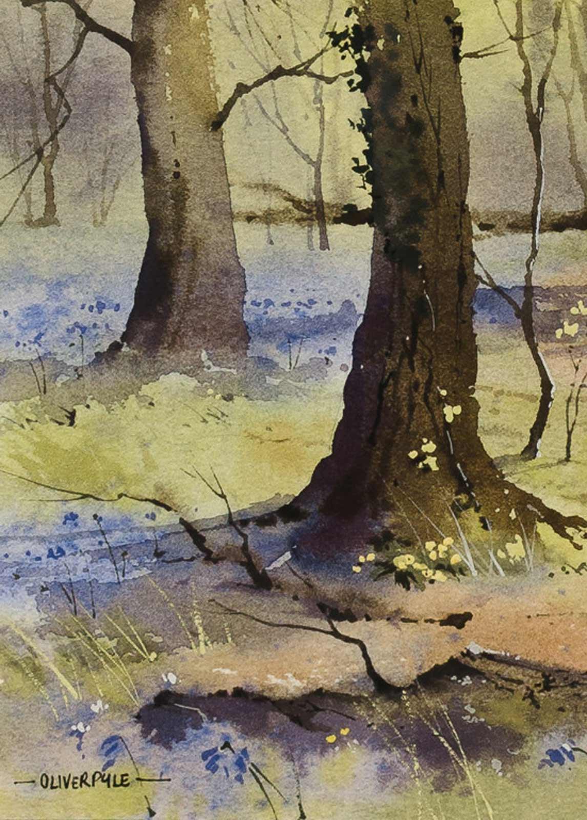 Bluebell Season, Sussex