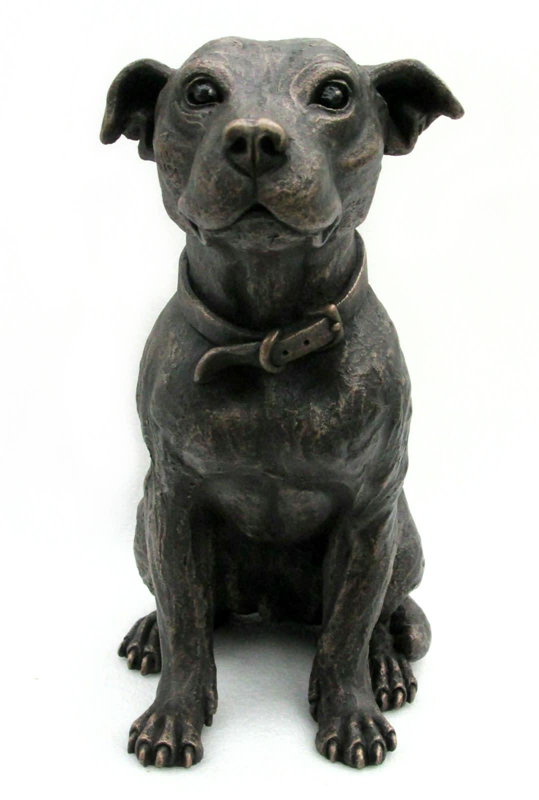 Baxter Sitting Staffy