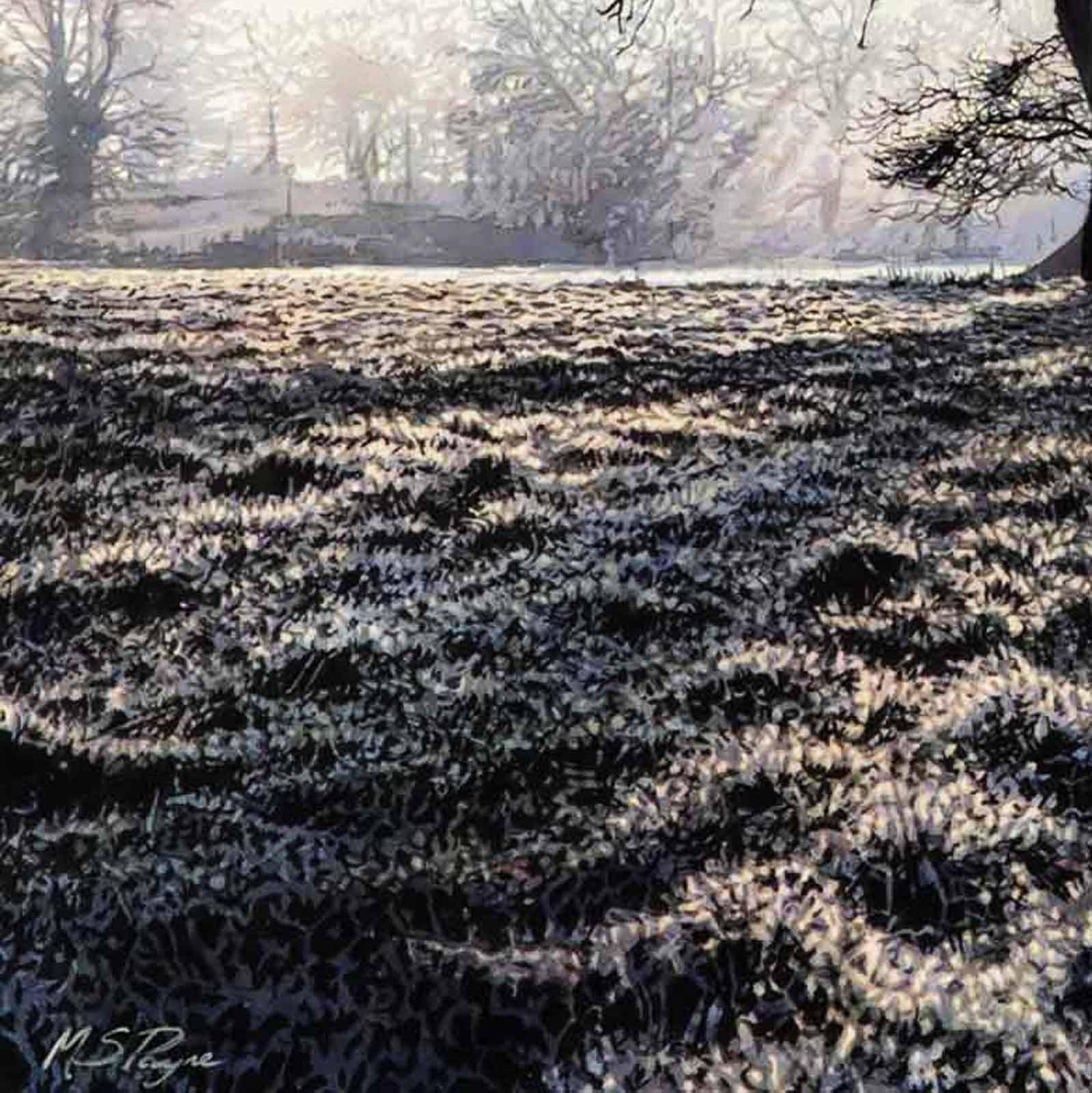 Richmond Park Rays