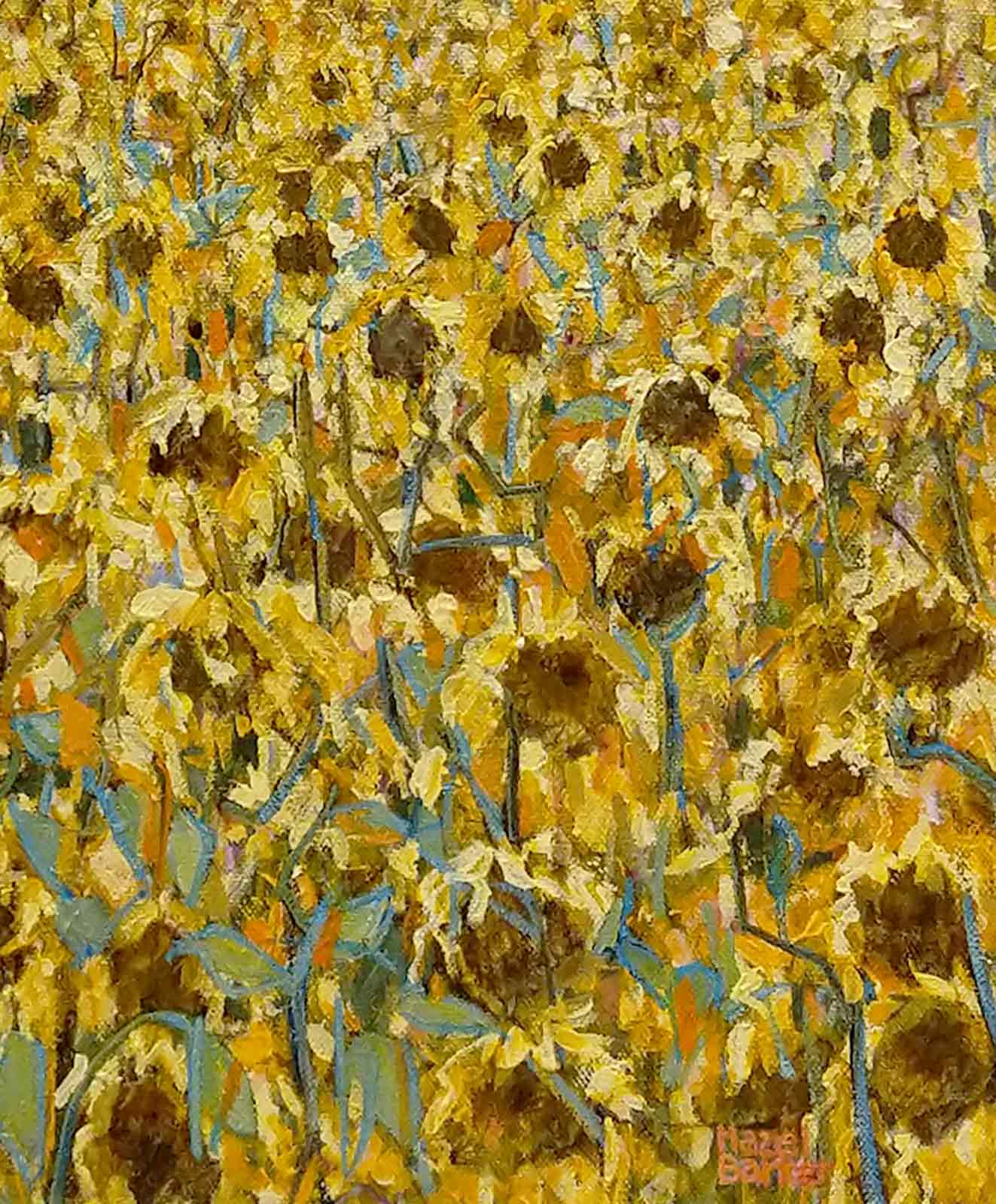 Late Sunflowers in September, Andalucia