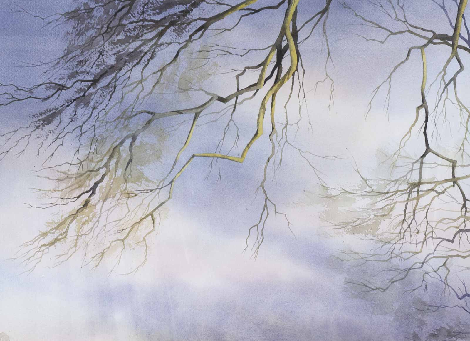 Beneath The Branches, Petworth Park
