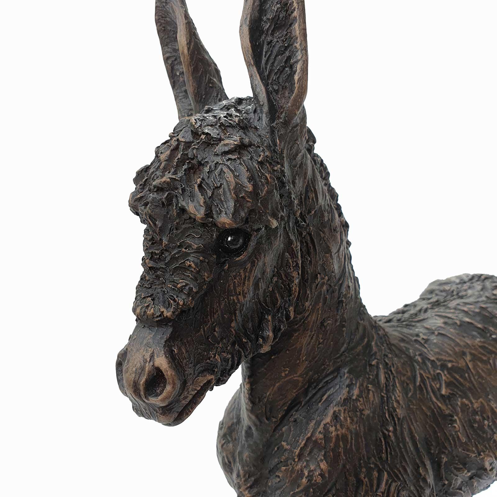 Bluebell, Donkey Foal