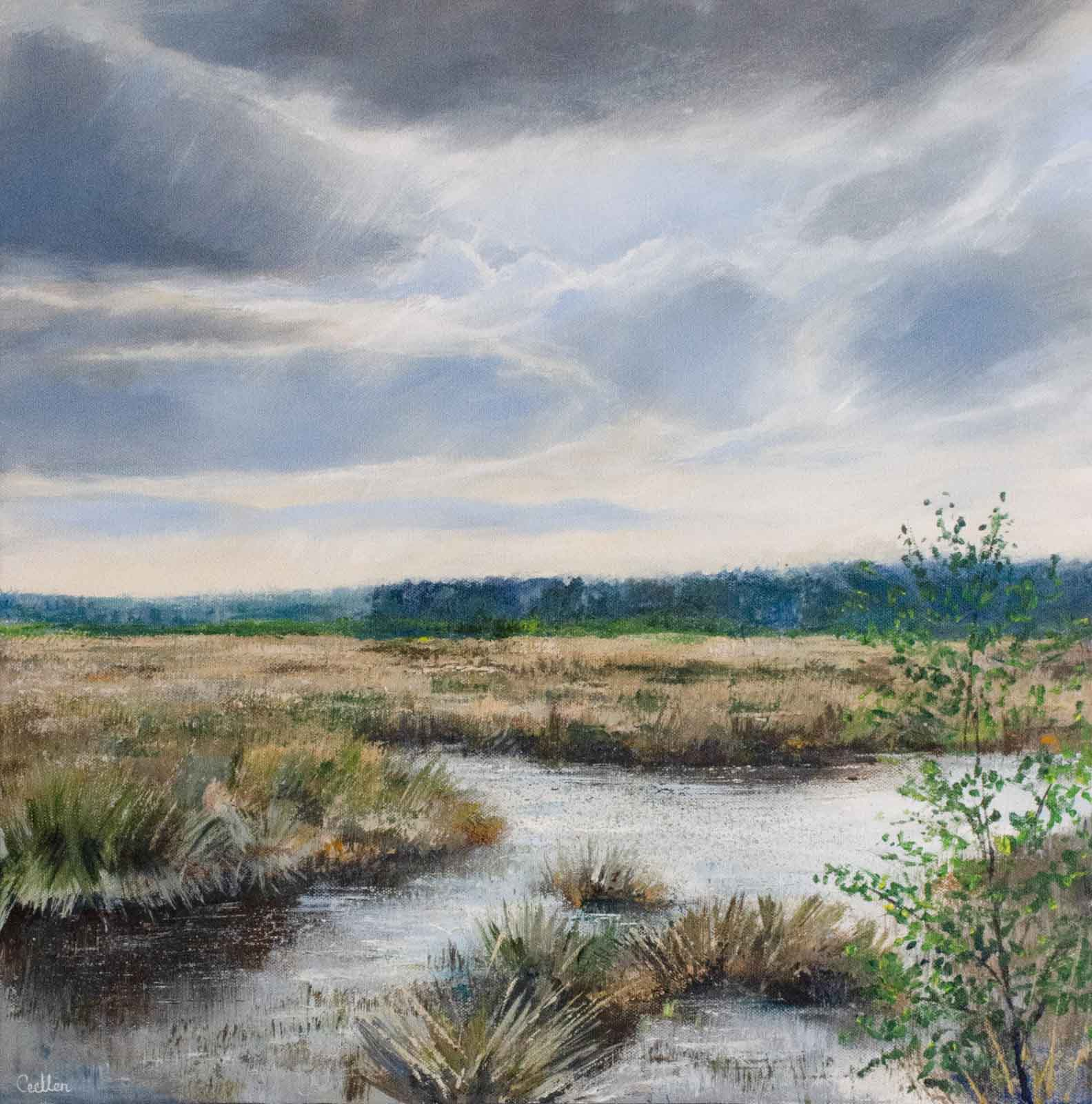 Soft Light, Thursley
