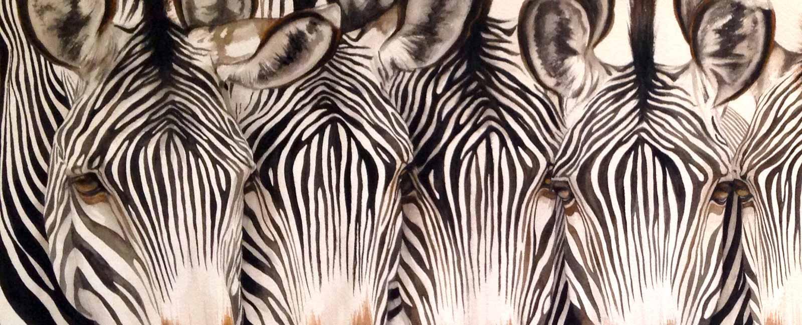 Family Resemblance, Zebras