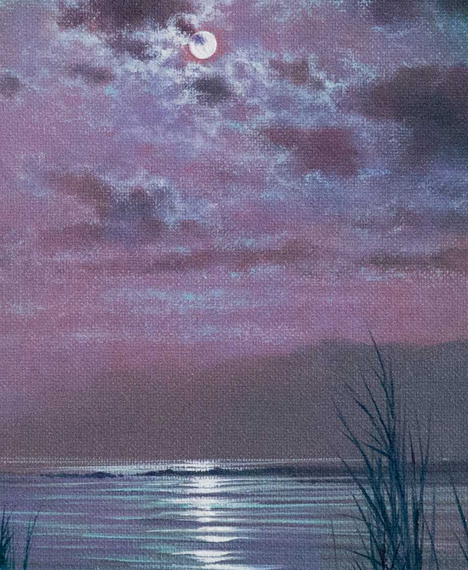 Moonlight Relections