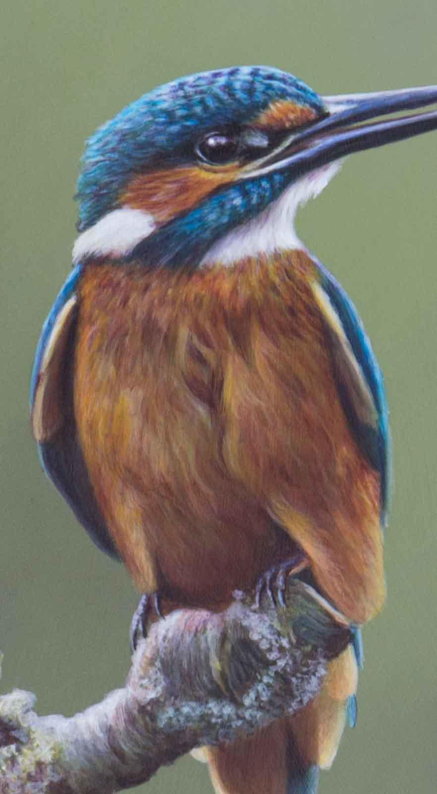 Kingfisher's Perch