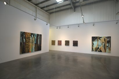 Nabil Nahas,  Palms and Stars,  Exhibition View