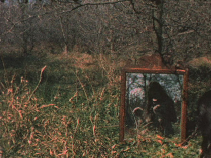 Ana Mendieta - Mirage