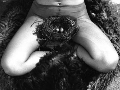 Birgit Jürgenssen - Nest, 1979