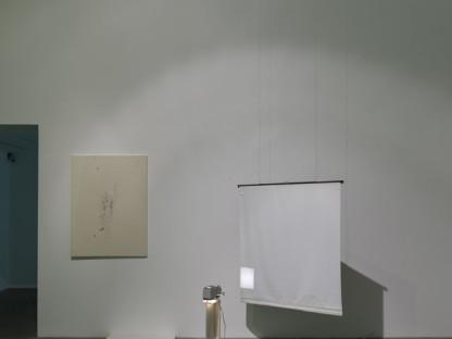 Ian Kiaer - Black tulip, glasshouse, 2012