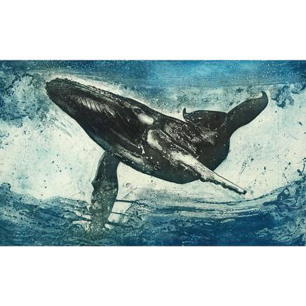 Marion MacPhee - Humpback Whale, 2016