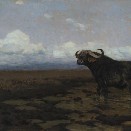 Friedrich Wilhelm Kuhnert - In the Marsh - Buffalo