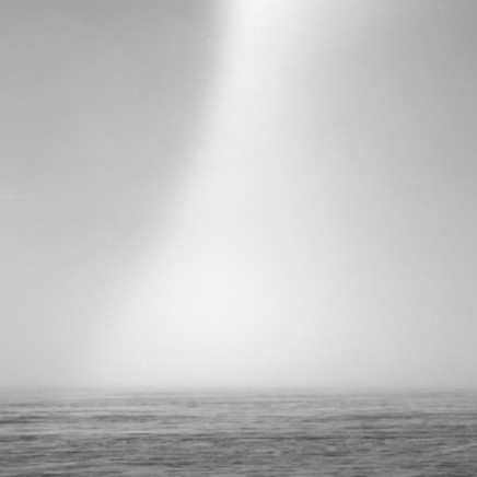 Anne Noble - Whiteout #17, 2008/10