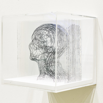 Angela Palmer - Beneath the Surface: Self-Portrait based on MRI, 2019