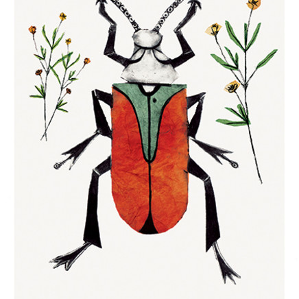 Beatrice Forshall - Scarlet Malachite Beetle