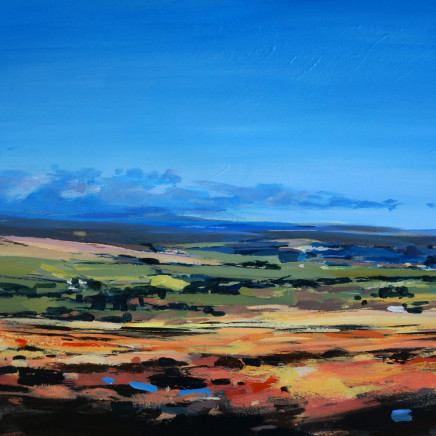 Colin Cook - North York Moors - late summer