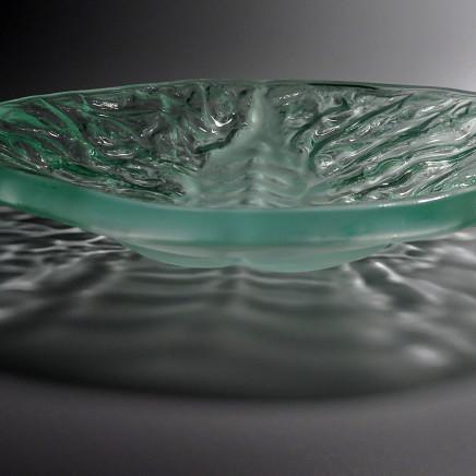 Teresa Chlapowski - Fossil Bowl
