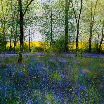 Paul Evans - Colours of Spring