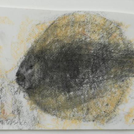 John Olsen - Flounder , 2001