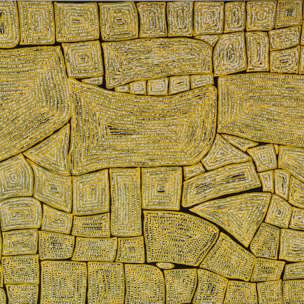 Thomas Tjapaltjarri - Tingari Dreaming, 2005