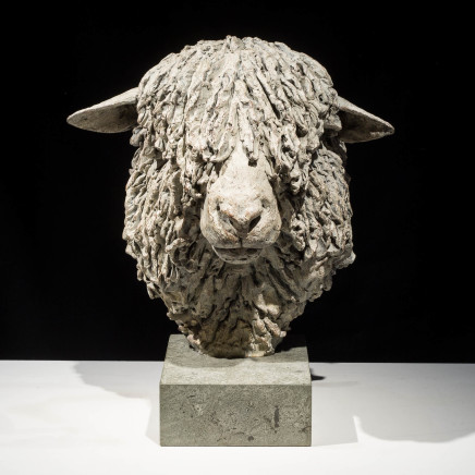 Hamish Mackie - Cotswold Ram Head