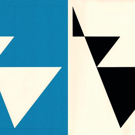 Richard Caldicott - Photogram/Paper negative (Unique)