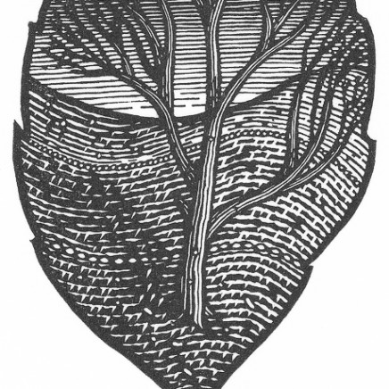 Jonathan Ashworth - The Whole Tree