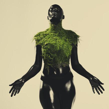 Ade ÀSÌKÒ Okelarin - Fertile offerings, 2018