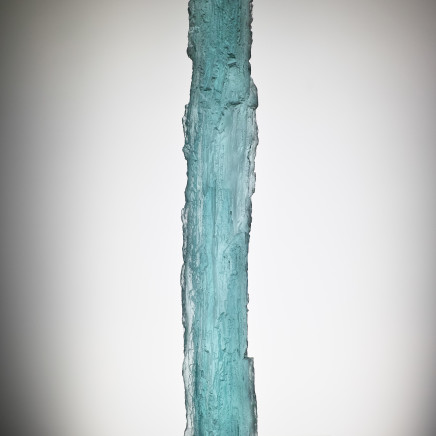 Michaela Smrček - Petrified Wood - Ice, 2017