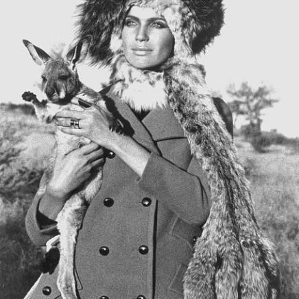 Franco Rubartelli - Baby Kangaroo, 1969
