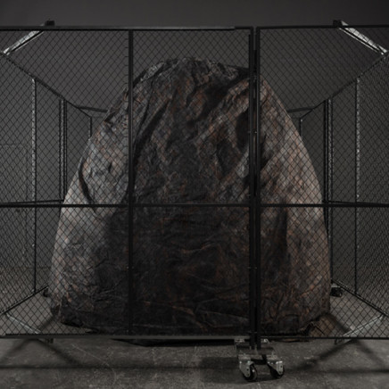 Max Dean, Caged, 2021