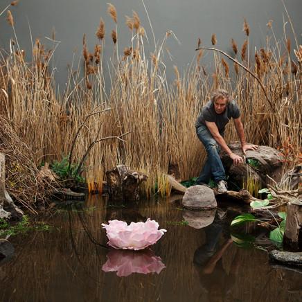 Max Dean, Swamp, 2014