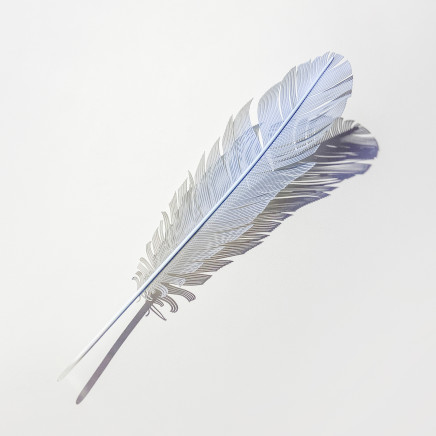 Neil Dawson - Blue Budgie Feather, 2020