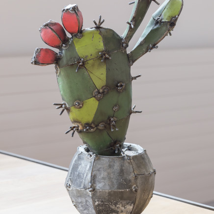 Hannah Kidd - You Are Tiny, Cactus, 2019