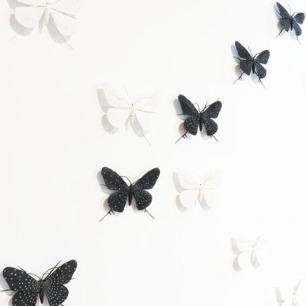 Elizabeth Thomson - From the Black & Whites, XXII , 2007/21