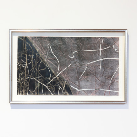 Fiona Van Oyen - I went looking for wilderness only to look for the order within it, 2020-21
