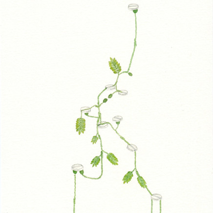 Zina Swanson - Panadol Plant, 2013